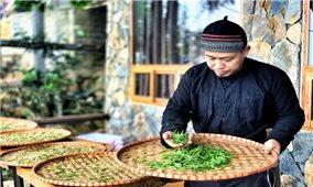 Đào Đức Hiếu bỏ phố lên rừng với khát vọng đưa trà Việt ra thế giới