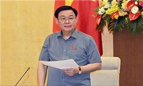 Việt Nam chủ động, tích cực, đóng góp thực chất vào nội dung của AIPA