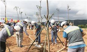 Quảng Trị: Phát động trồng cây xanh bảo vệ môi trường sinh thái ở khu vực triển khai các dự án điện gió