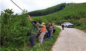 An toàn lưới điện mùa mưa bão ở Quảng Ninh: Chú trọng phương châm