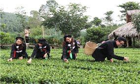 Bắc Giang: Khai thác lợi thế, phát triển du lịch