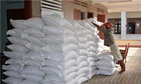 Chính phủ xuất cấp hơn 1.847 tấn gạo hỗ trợ người dân tỉnh Quảng Nam, Quảng Ngãi bị ảnh hưởng bởi dịch Covid-19