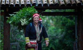 Nữ Giám đốc HTX ở Sa Pa biến tri thức bản địa truyền thống thành cơ hội kinh doanh