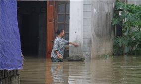 Quỳnh Lưu (Nghệ An): Nước lũ rút chậm, hơn 1.000 hộ dân vẫn còn bị ngập lụt