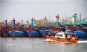 Ứng phó bão số 7: Hà Tĩnh gọi tàu, thuyền vào nơi tránh trú an toàn