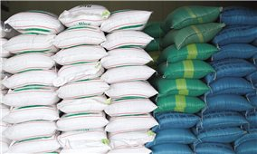 Xuất cấp 741,285 tấn gạo hỗ trợ người dân Quảng Trị gặp khó khăn trong thời gian giãn cách xã hội