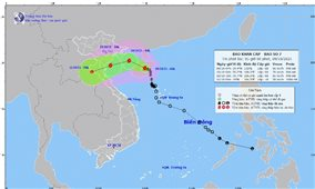 Bão số 7 gây mưa to từ Thanh Hóa đến Quảng Bình, biển động dữ dội
