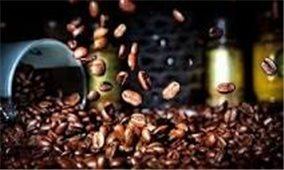 Giá cà phê hôm nay 13/10: Đồng loạt tăng mạnh