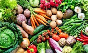 Thi ảnh Hệ thống nông nghiệp thực phẩm bền vững vì cuộc sống