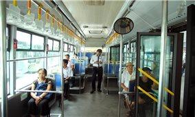 """BRT, cây xanh và sợi dây kinh nghiệm """"rút mãi chưa hết"""""""