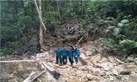 Xóa điểm nóng về phá rừng