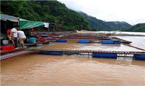 Đẩy mạnh phát triển nuôi trồng thủy sản