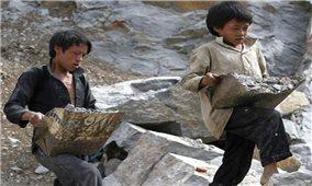 Việt Nam hiện có 1,75 triệu lao động trẻ em