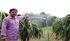 Ứng dụng KHKT vào sản xuất nông nghiệp vùng DTTS