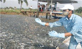 Kỹ thuật phòng bệnh cho cá nước ngọt