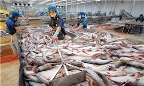 Cá tra bị tăng mức áp thuế chống bán phá giá cao kỷ lục: Thận trọng để tìm hướng đi mới