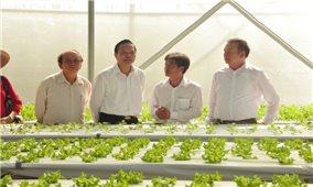 Phát triển nông nghiệp công nghệ cao ở Bình Phước: Những bước đi tự tin