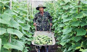 Cách làm giàu của một thanh niên dân tộc Thái