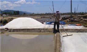 Diêm dân Sa Huỳnh lo lắng khi bị thu hồi đất làm muối