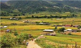 Sử dụng Amiăng trắng tại Việt Nam: Bài 2: Áp dụng đồng bộ nhiều giải pháp để loại trừ