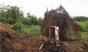 Người dân bản Khe Ngát (Quảng Bình): Hơn 30 năm định canh, định cư vẫn thiếu đất sản xuất