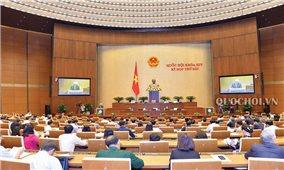 Kỳ họp thứ 6, Quốc hội khóa XIV: Đẩy mạnh tự chủ đại học