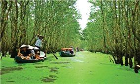 Đồng bằng sông Cửu Long: Thu nhập cao từ mùa lũ đẹp