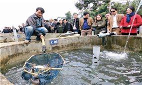 Ứng dụng tiến bộ khoa học và công nghệ sản xuất giống cá hồi