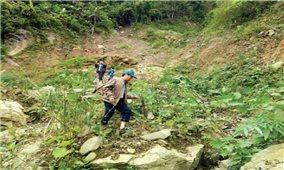 Quảng Ngãi: Người dân Ba Giang bất an vì nứt núi