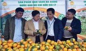 Hà Giang: Giá trị sản phẩm nông nghiệp tăng cao nhờ chỉ dẫn địa lý