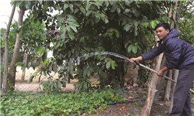 Cấp nước tập trung nông thôn: Hướng đến các yếu tố bền vững
