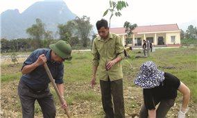Lục Yên tích cực trồng rừng vụ xuân