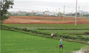 Bình Định: Các dự án bất động sản ảnh hưởng sinh kế người dân