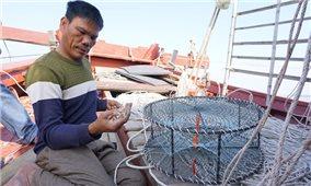 Ngư dân mòn mỏi chờ tiền hỗ trợ đóng mới tàu thuyền