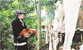 Rừng được bảo vệ từ phong tục, tập quán