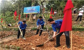 Thanh niên dân tộc thiểu số thực hiện Di chúc của Bác Hồ