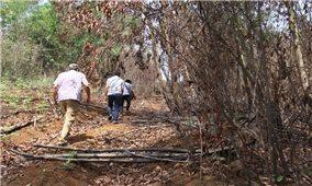 """Những """"lỗ hổng"""" trong quản lý rừng và đất rừng ở ĐăK Nông"""