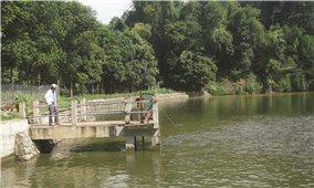 Lào Cai: Cần sớm nâng cấp, sửa chữa các hồ thủy lợi