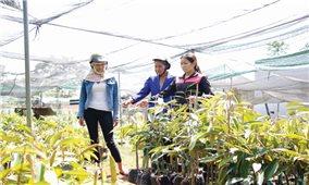 Câu lạc bộ Nữ doanh nghiệp huyện Krông Buk: Hỗ trợ nhiều phụ nữ DTTS phát triển kinh tế