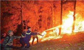 Căng mình dập lửa, cứu rừng