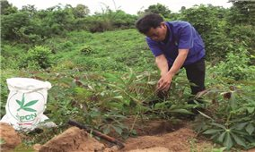 Chuyển đổi cây trồng chống hạn ở Quảng Trị: Vì sao người dân chưa đồng thuận?