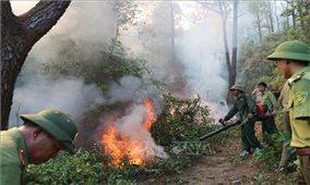Cháy rừng ở miền Trung - nhìn lại yếu tố tự nhiên và xã hội
