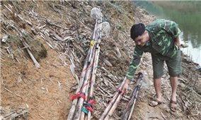 Cần chấm dứt khai thác cá bằng xung điện ở hồ Thác Bà