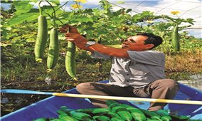 Khởi sắc vùng đồng bào Khmer