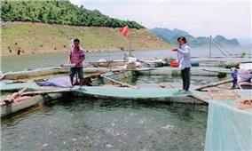Phát triển HTX kiểu mới ở Sơn La: Hướng thoát nghèo hiệu quả