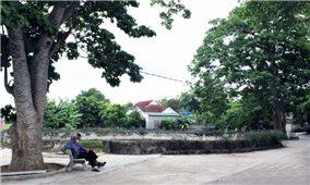 Hà Tĩnh: Giữ nếp làng trong xây dựng nông thôn mới
