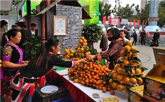 Hội chợ triển lãm nông nghiệp quốc tế AgroViet 2020
