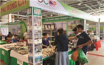 Quảng Ninh: Sức hút từ sản phẩm OCOP vùng DTTS