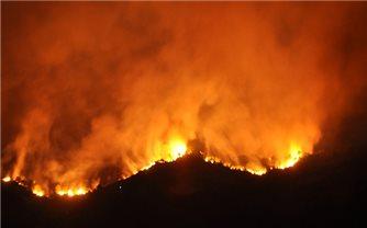 Liên tiếp cháy rừng ở Nghệ An và Hà Tĩnh
