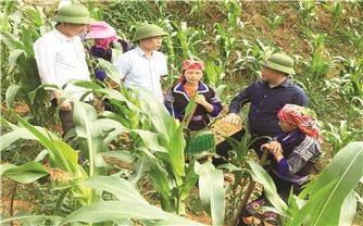Đảng bộ huyện Mù Cang Chải (Yên Bái) nhiệm kỳ 2020 - 2025: Tập trung thực hiện 3 khâu đột phá, 4 chương trình trọng điểm